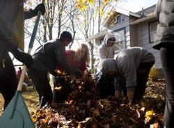 Photo of Students Raking Leaves